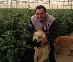 עם הכלב צ'אבי