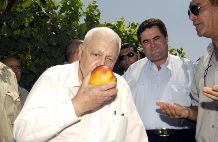 במשרד האוצר המציאו כינוי חדש לשר האוצר לא עוד מיני הורדוס או שר הפקקים ושר העוני והאבטלה אלא גרגמל D837-043-PRIME-MINISTER-ARIEL-SHARON-AGRICULTURE-MINISTER-ISRAEL-KATZ-VISIT-TO-THE-AGRICULTURAL-RESEARCH-VOLCANI-INSTITUTE-2003-MOSHE-MILNER-Laam-712x464