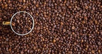 פולי הקפה הפופולריים בעולם